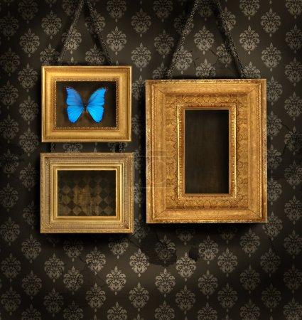 Three gilded frames on antique wallpaper