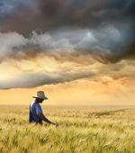 Farmář kontrola jeho úrodu pšenice