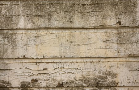 Peeling paint on grunge wooden wall
