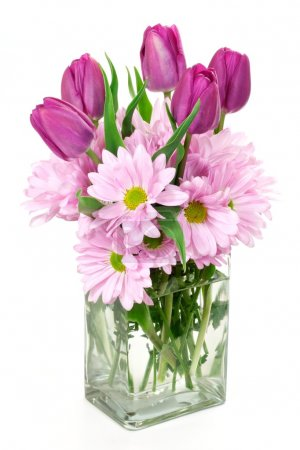 Photo for A Spring flower arrangement of daisies and tulips in a rectangular glass vase. - Royalty Free Image