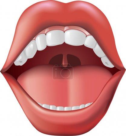 Photo pour Bouche ouverte avec la langue qui sort. Adobe Illustrator gradient maillage outil a été utilisé. Couleur CMJN . - image libre de droit