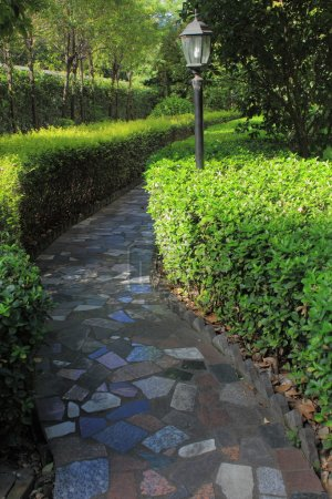 Photo for Garden path - Royalty Free Image