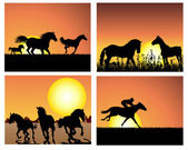 Set of horse silhouette on sunset background Vector illustration