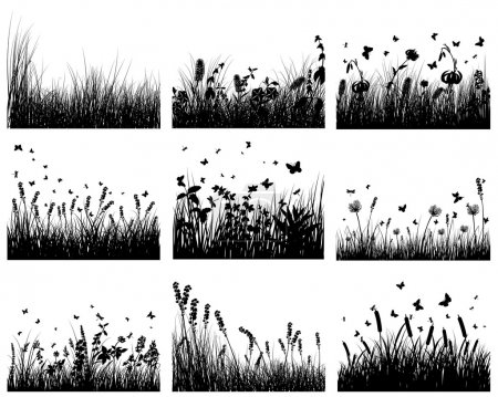 Illustration for Vector grass silhouettes backgrounds set. All objects are separated. - Royalty Free Image