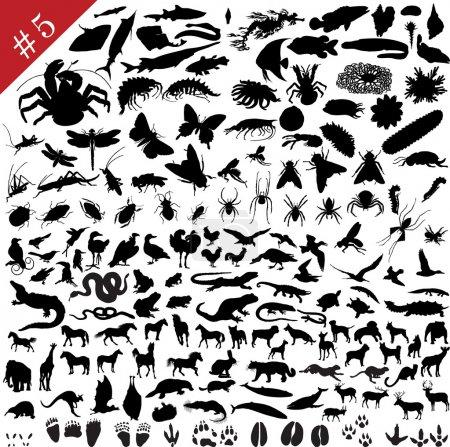 Illustration pour Ensemble de différents animaux, oiseaux, insectes et poissons silhouettes vectorielles - image libre de droit
