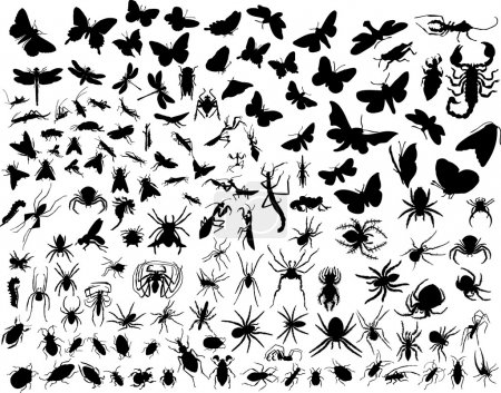 Illustration for Big collection of different vector insects silhouettes - Royalty Free Image