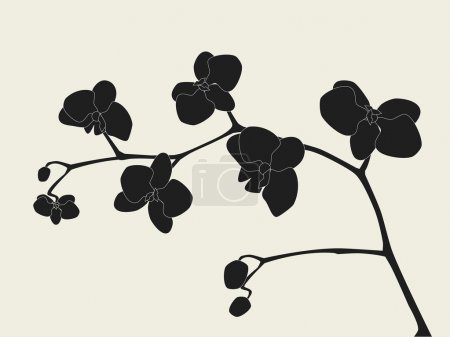 Illustration for Orchid branch silhouette - Royalty Free Image