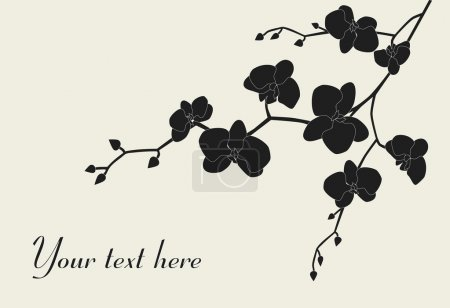 Illustration for Stylized orchid branch design with copy-space, vector illustration - Royalty Free Image