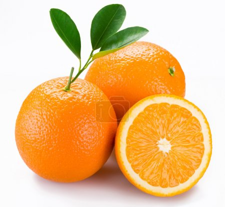 Photo for Orange on a white background - Royalty Free Image