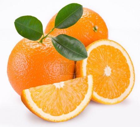 Photo pour Groupe des oranges sur fond blanc - image libre de droit