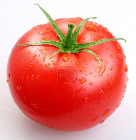 Tomato...
