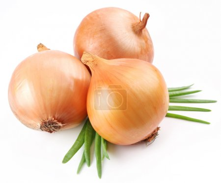 Photo for Fresh bulbs of onion on a white background - Royalty Free Image