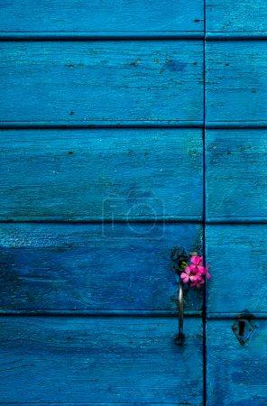Blue wooden door with flowers