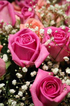 Photo pour Image montre un bouquet de roses, pour la plupart roses, orné de petites fleurs blanches - image libre de droit