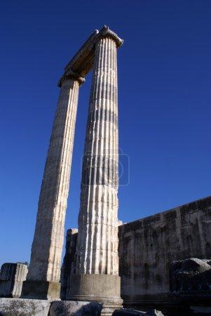 Two columns on ruins of Apollo temple in Didim, Tu...