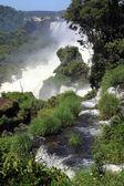 Trávy a vodopády