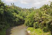 Bali řeka