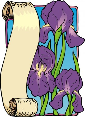 Illustration for Vector illustration of a scroll bookplate with royal purple irises. - Royalty Free Image