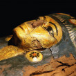 Detail of the ancient egypt sarcophagus from 21st ...