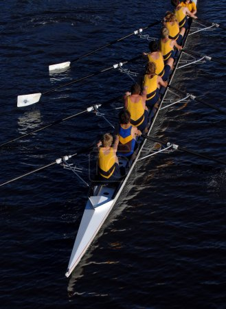 Rowing crew in action.