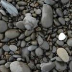 Smooth white stone on pebbles...