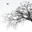 Vector silhouette of some branches...