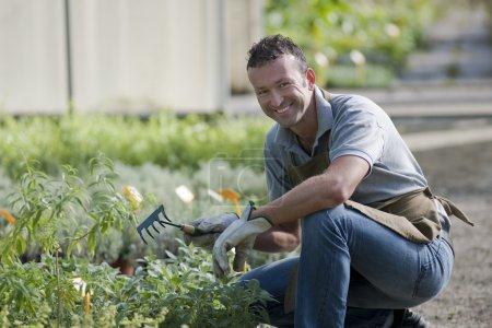 Photo pour Jardinier souriant dans une serre - image libre de droit