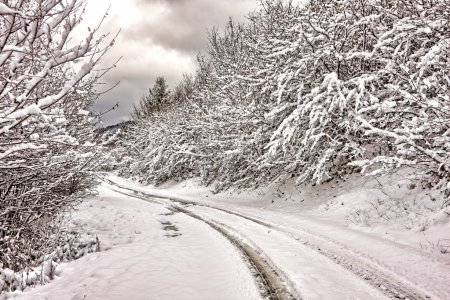 Photo for Winter landscape of a countryside road - Royalty Free Image