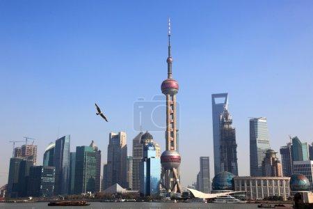 Shanghai Skyline с восточной колосниковой башней ,