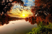 Sunset summer scene: bungee over river water on beauty forest ba