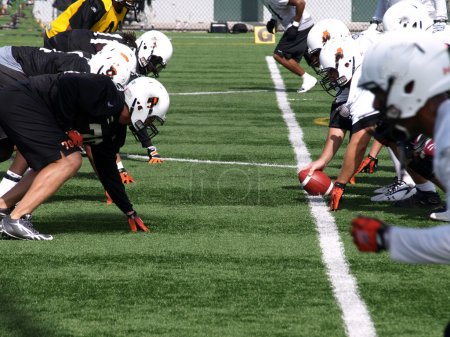 Photo for B.C. Lions Football team on the practise in B.C. Lions Home Surrey 07.sep.2010 11.a.m. - Royalty Free Image