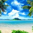 Tropical coast, beach with hang palm trees. View o...