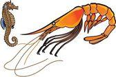 Shrimp and sea horse