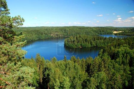 Photo pour Un paysage de belle finition, pris dans la région des mille lacs, en Finlande. Nous pouvons voir des lacs et forêts de sapins et un ciel bleu ensoleillé. - image libre de droit