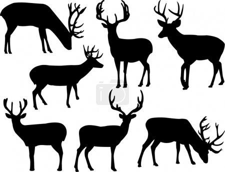 Illustration pour Collection silhouette cerfs - vecteur - image libre de droit
