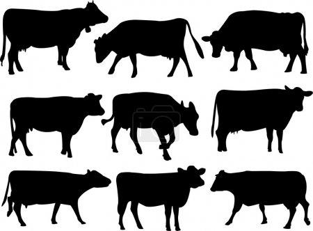 Illustration pour Collection silhouette de vache - vecteur - image libre de droit
