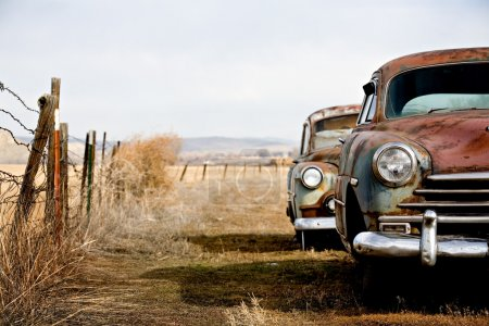 Vintage cars abandoned and rusting away in rural w...