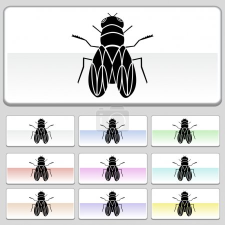 Illustration for An image of a fly. - Royalty Free Image