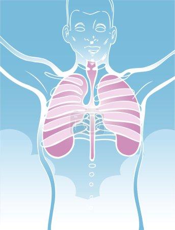 Illustration pour Une image d'une personne et de ses poumons . - image libre de droit