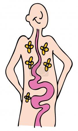 Health Digestion